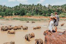 Sri Lanka photos☀️