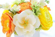 Un simple regard posé sur une fleur et voilà une journée remplie de bonheur