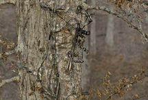 Hunting / ,