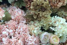 Flowerlar