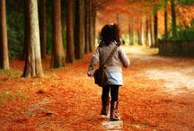 Autumn / by Kenji 08