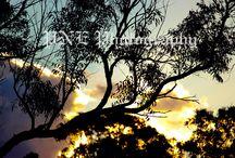 Sky Photography / Photos by PNE