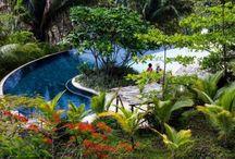 Blue Spirit, Nosara, Costa Rica
