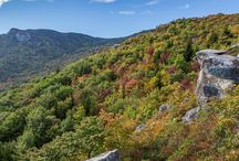 Best autumn hikes near Asheville: our top 10 favorite hikes through fall leaf color / Hike through western North Carolina's autumn beauty on our top 10 favorite trails to stunning views and the the best fall leaf color near Asheville. See the full list: http://ashevilletrails.com/asheville-fall-leaf-color-top-autumn-hikes/