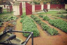Zámek a jeho zahrady