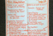 Sharing the planet - adaptation