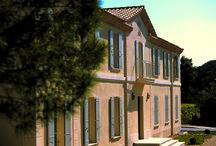 Vignobles Famille Quiot / Visite du vignoble et des chais aux Vignobles Famile Quiot  en Côtes du Rhône Réservez avec winetourbooking.com