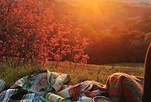 Inspiráció piknikezéshez/Picnic inspiration