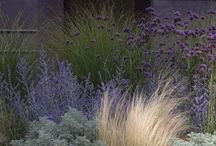 Garden - Grasses and twigs