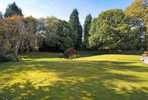 Gorgeous Gardens / Gorgeous gardens in our homes for sale in Cheshire.