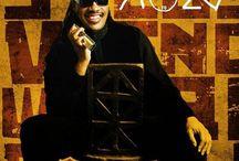 Stevie Wonder lecture 2015-0501 / My Stevie Wonder lecture 2015-0501