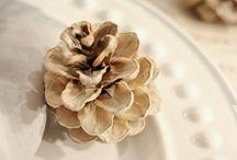 DIY: Pine Cones