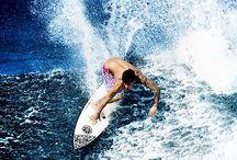 Ocean Life Hawaii