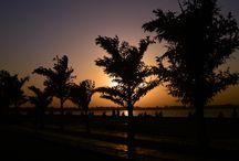 Chandigarh Random Pics / Random Pics Taken by Me