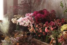 FLOWER SHOPES