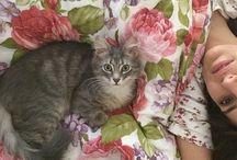 Nazliii / Cats