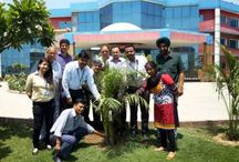 International Biodiversity Day to be celebrated at Northwest Group of Institutions on 22 May 2015 / This year's theme reflects the importance of efforts made at all levels to establish a set of Sustainable Development Goals (SDGs) as part of the United Nations Post-2015 Development Agenda for the period of 2015-2030 and the relevance of biodiversity for the achievement of sustainable development.   Humanity's fate is tightly linked with biological diversity – the variety of life on earth. Biodiversity is essential for sustainable development and human well-being.
