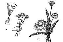 Uroki floristiki