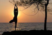 Go Fitness!!! / by Lynda Lehman