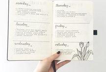 Bullet Journal Plans