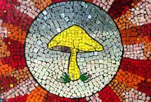 Mushrooms & Mycology