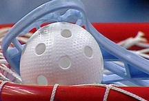 Floorball/Innebandy/Salibandy/Unihockey