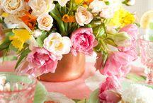 Springtime / by Lynn Robinson