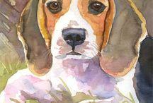 Beagle Köpek
