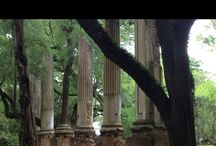 Things to see and do in Columbia, SC area / Neat places to see and things to do in Columbia, SC