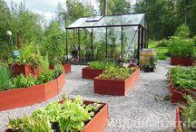 Have / ideer til indretning af haven