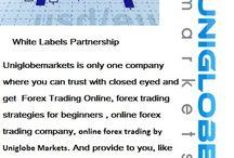 online forex trading by Uniglobe Markets