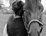 Ideeën shoot met paard