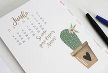 Planners e calendários 2017