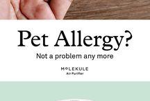 Aparato para las alergias