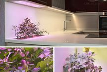 GROWLIGHT -  Interiérové zahrady / Zahrada GROWLIGHT je kus živé přírody zasazený do prostoru, kde trávíme všední dny. Toto unikátní spojení moderních technologií a zeleně krásně projasní a provoní Vás domov, kavárnu nebo kancelář. Vysoce efektivní LED osvětlení rostlin podpoří zdravý a několikanásobně rychlejší růst.  Pěstujte si doma vše, co máte rádi!
