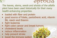 Love Love Sprouts