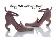 Pumps & Puppies / To celebrate National Puppy Day