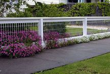 Back yard fences