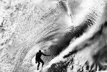 surf & co.