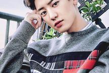 Chanyeol • Exo