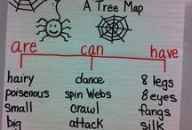 Teaching - Anchor Charts