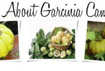 Garcinia Cambogia Discount 2015 / Garcinia Cambogia Discount Code 2015, Best Garcinia Cambogia Extract Coupon and Promo Codes.