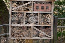 case per animali e insetti