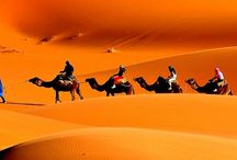 Morocco Private Tours..