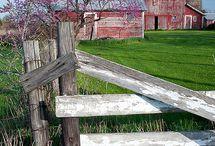 Farms / Barns