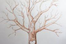 drzewo gnealogiczne