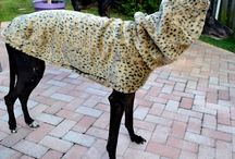 Greyhound Leopard Faux Fur Coat / Ooooh!  La-La!  It's our famous Faux Fur Coats just in time for fall at ww.duds4buds.com. Your hound will be the envy of the town wearing this Gorgeous Leopard Faux Fur coat with lining. Luxuriously soft and warm. These beautiful coats do not last long! www.duds4buds.com