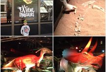 Extreme Dinosaurs Reviews! / Reviews from visitors to Extreme Dinosaurs in Atlanta, GA! #ExtremeDinos