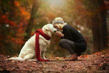 Animals and pet