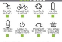 ecology(imgs)